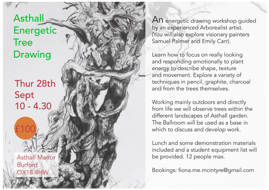 Thurs-28th-September-Energetic-Tree-Drawing-with-Fiona-McIntyre.png#asset:3863